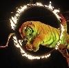 Цирки в Аргаяше
